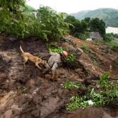 Trágicos deslaves en Brasil