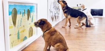 Londres abre una exposición de arte apta para perros