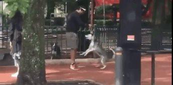 Sujeto asfixia a un perro Husky en la vía pública