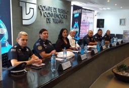 Remueven Ejemplar de Ballena Gris Varado en Costas de Rosarito