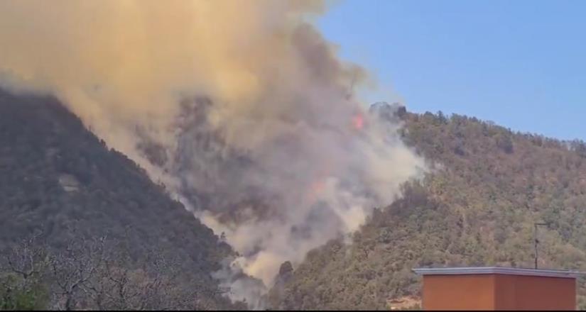 Incendio en Huixquilucan consume 6 hectáreas de bosque y pastizales