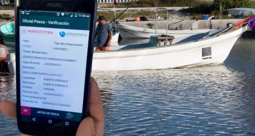 Entra en operación el formato digital para el permiso de pesca comercial en embarcaciones