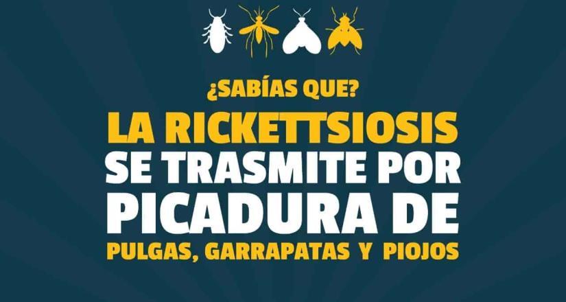 Gobierno de Ensenada jornada de recolectará basura para coadyuvar a mitigar la rickettsiosis