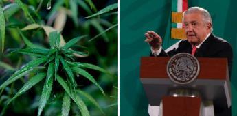 PRD critica a AMLO por preocuparse más por productores de marihuana